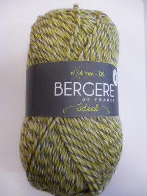Idéal de Bergère de France 10174 Mix Vert