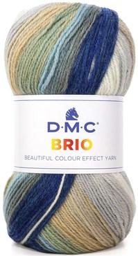 BRIO de D.M.C N°401 Coloris Multicolore