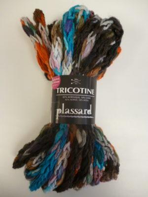 TRICOTINE de PLASSARD coloris N°51 Écheveau de 100 Grs Multicolore