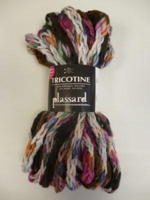 TRICOTINE de PLASSARD coloris N°52 Écheveau de 100 Grs Multicolore