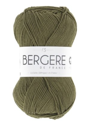 100% Coton Bio de Bergère de France Mousse 10661
